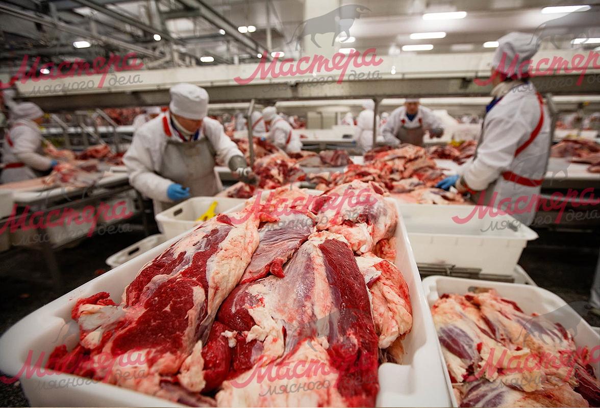 Мясо конвейеры транспортеры безроликовые